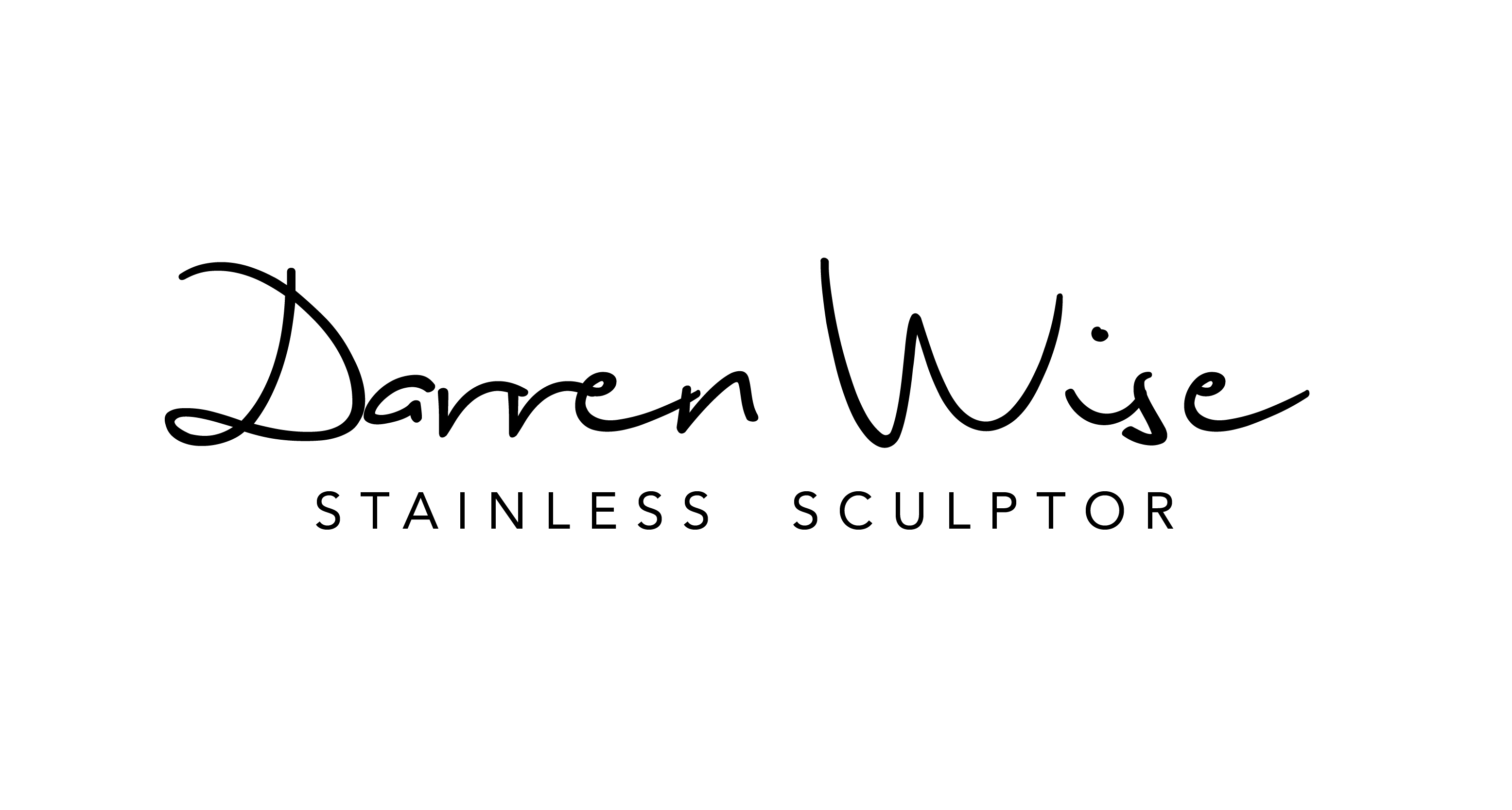 Darren Wise Stainless Sculptor | www.darrenwise.co.nz Logo